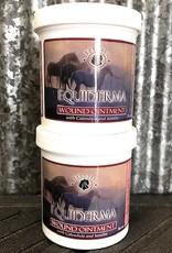 Equiderma Equiderma Wound Ointment 16 oz