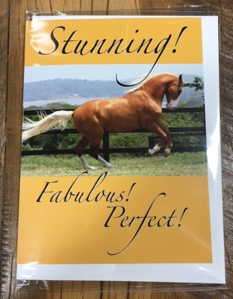 Palomino Style Card