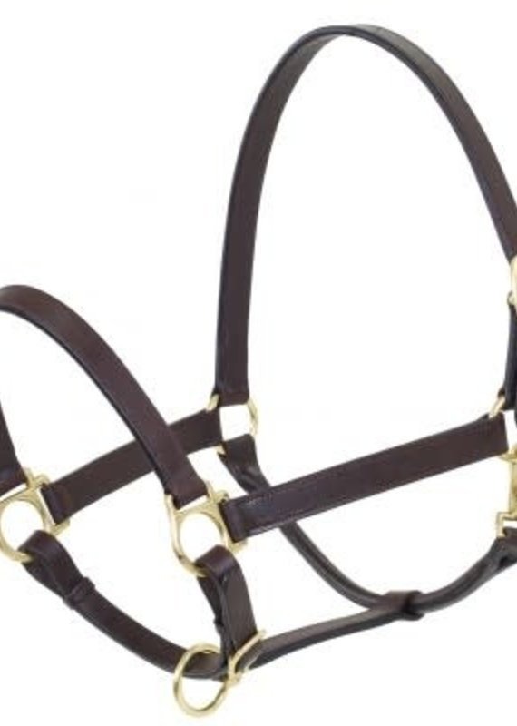 Camelot Camelot Leather Stable Halters