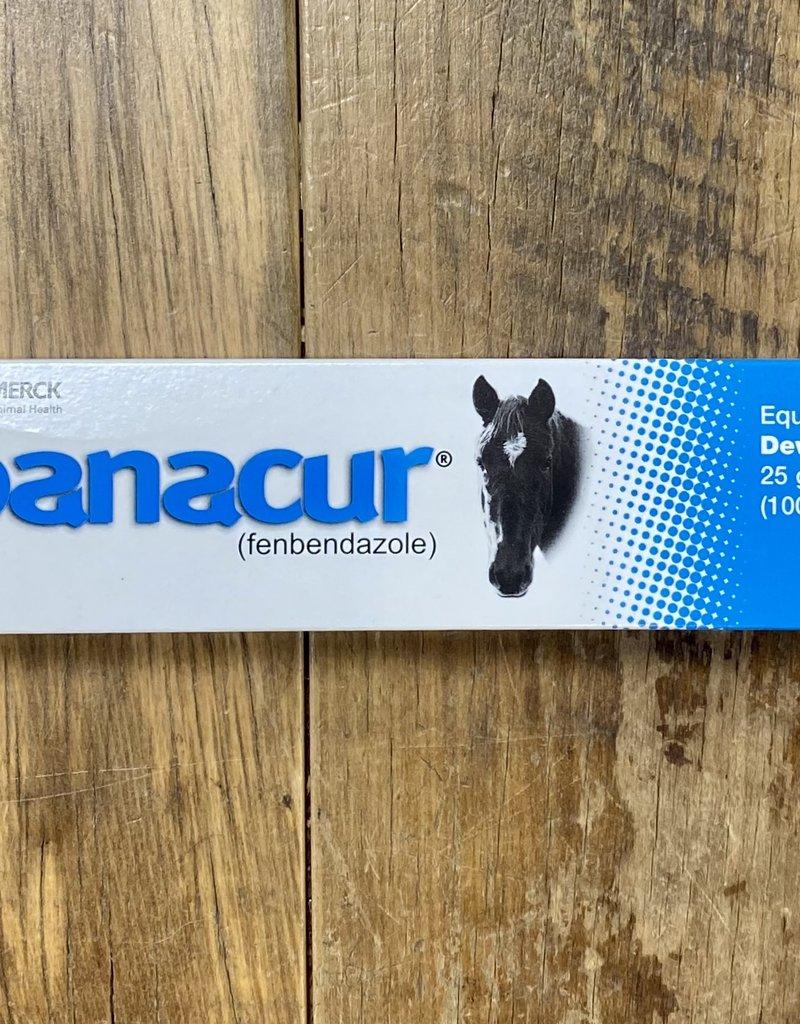 Panacur Paste 10% 25 gm.