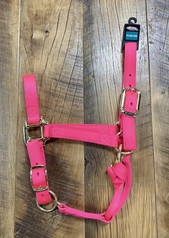 Weaver Leather Weaver Nylon Halter Diva Pink