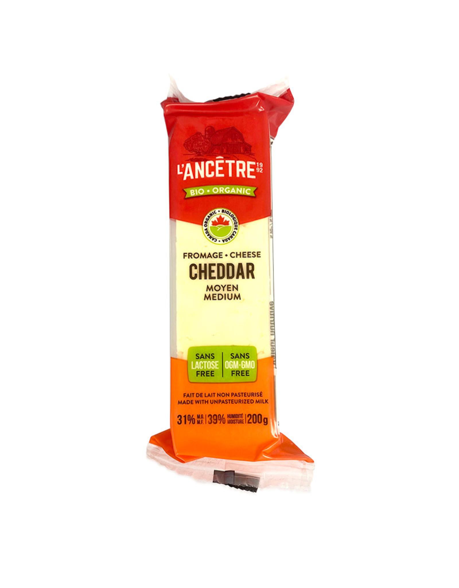 L'Ancetre LAncetre - Cheese, Organic Lactose Free Medium Cheddar (200g)