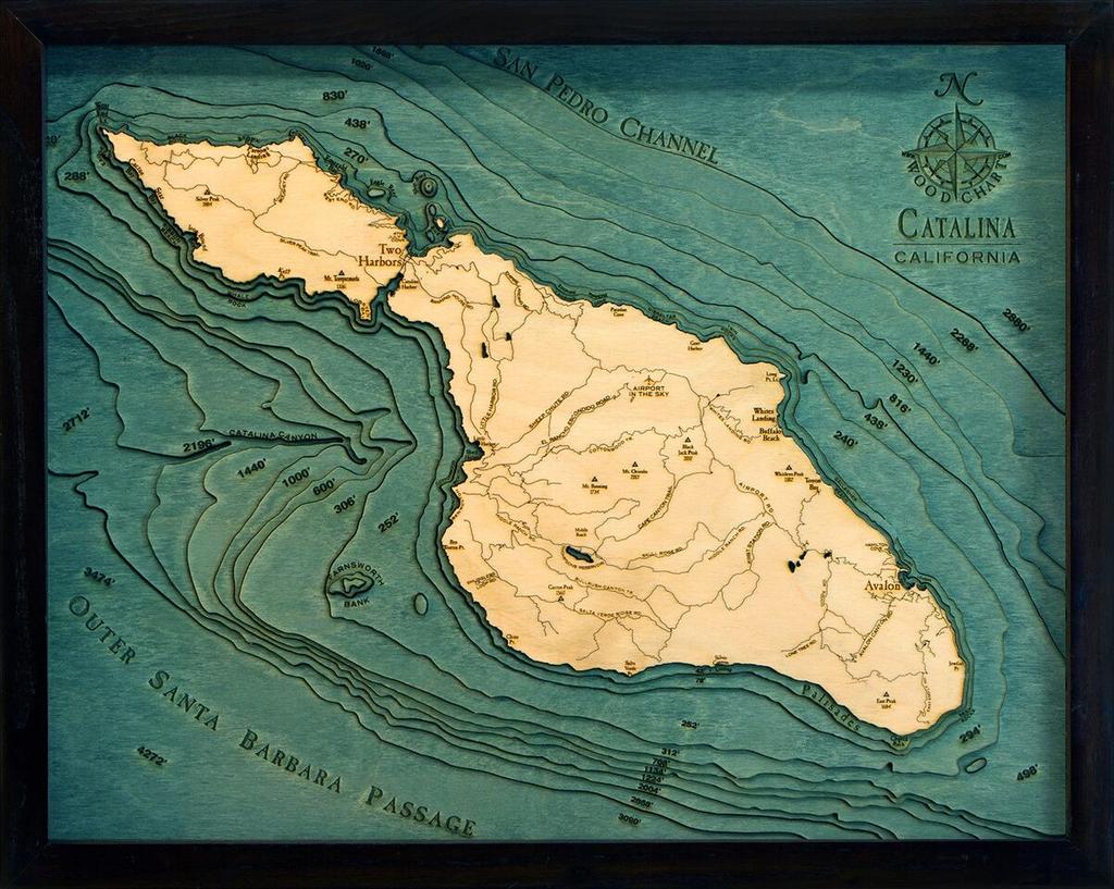 "Catalina Island Wood Carving 16"" x 20"""