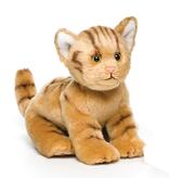 Orange Tabby Cat Small