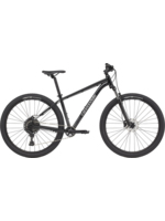 CANNONDALE TRAIL 5 SMALL GREY 21