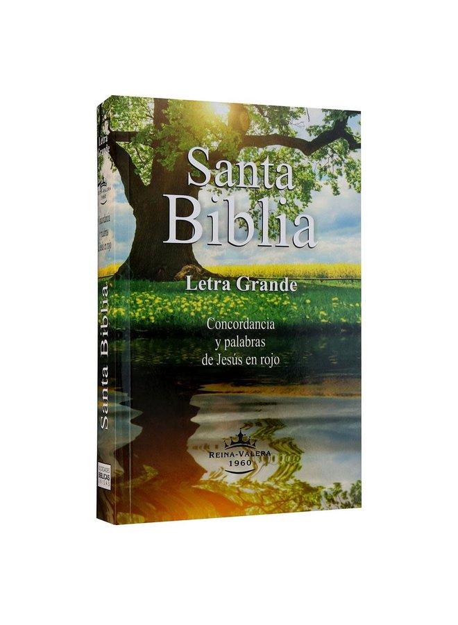 BIBLIA RVR60 LETRA GRANDE RUSTICA ECONOMICA