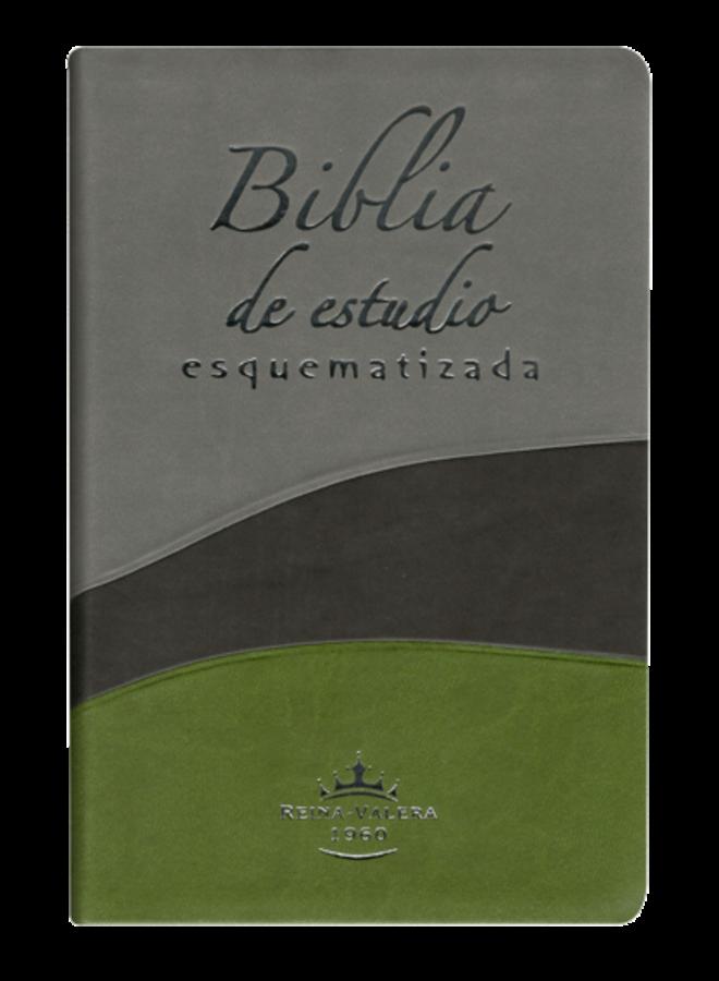 BIBLIA DE ESTUDIO ESQUEMATIZADA TRICOLOR RVR1960