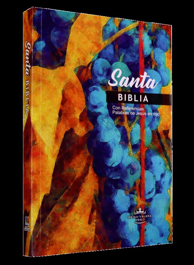 BIBLIA RVR60 MISIONERA RUSTICA