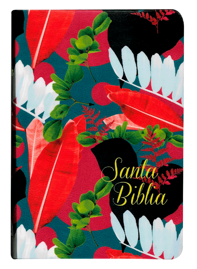 BIBLIA RVR065CLG V COLORES