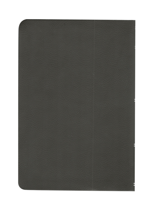 BIBLIA RVR065CLGC IP GRIS
