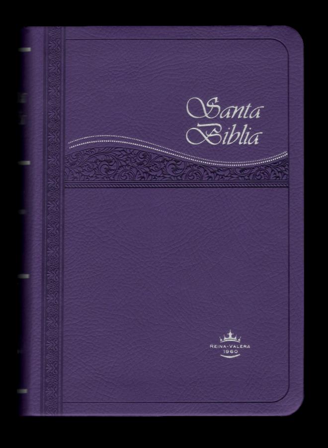 BIBLIA CHICA CANTO PURPURA CANTO PLATEADO