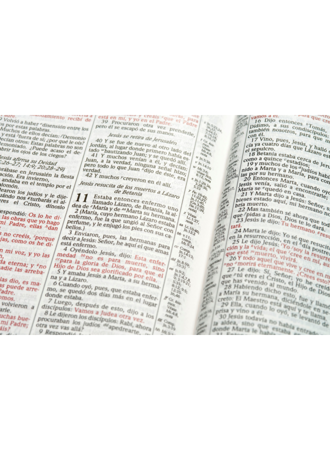 BIBLIA DE ESTUDIO SCOFIELD RVR60 PASTA DURA