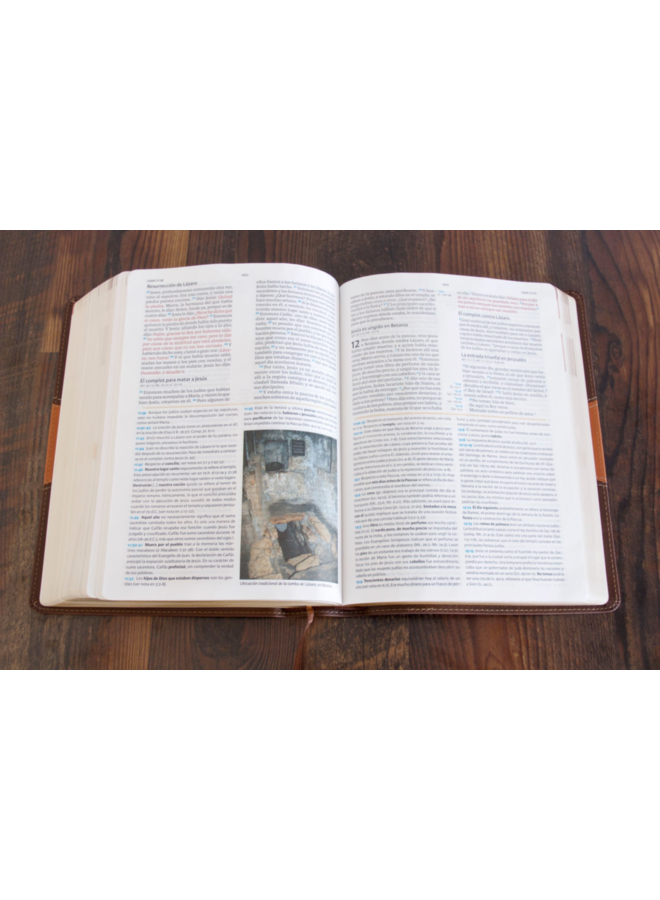 BIBLIA DE ESTUDIO HOLMAN REINA-VALERA 1960, CHOCOLATE/TERRACOTA, SIMIL PIEL