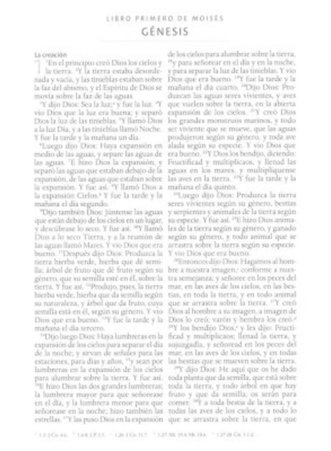 Biblia Reina Valera 1960 letra grande. Símil piel fucsia, cremallera, tamaño manual