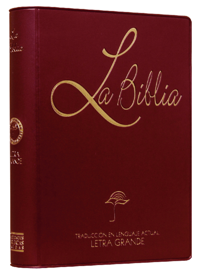 BIBLIA MEDIANA LETRA GRANDE VINIL