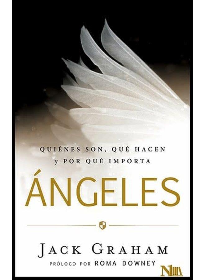 ANGELES: QUIENES SON, QUE HACEN Y POR QUE IMPORTA