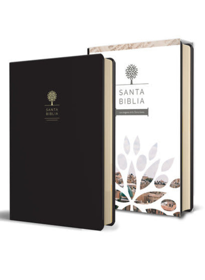 Biblia Reina Valera 1960 letra grande en caja de regalo. Símil piel, dos tonos, fotos de Tierra Santa