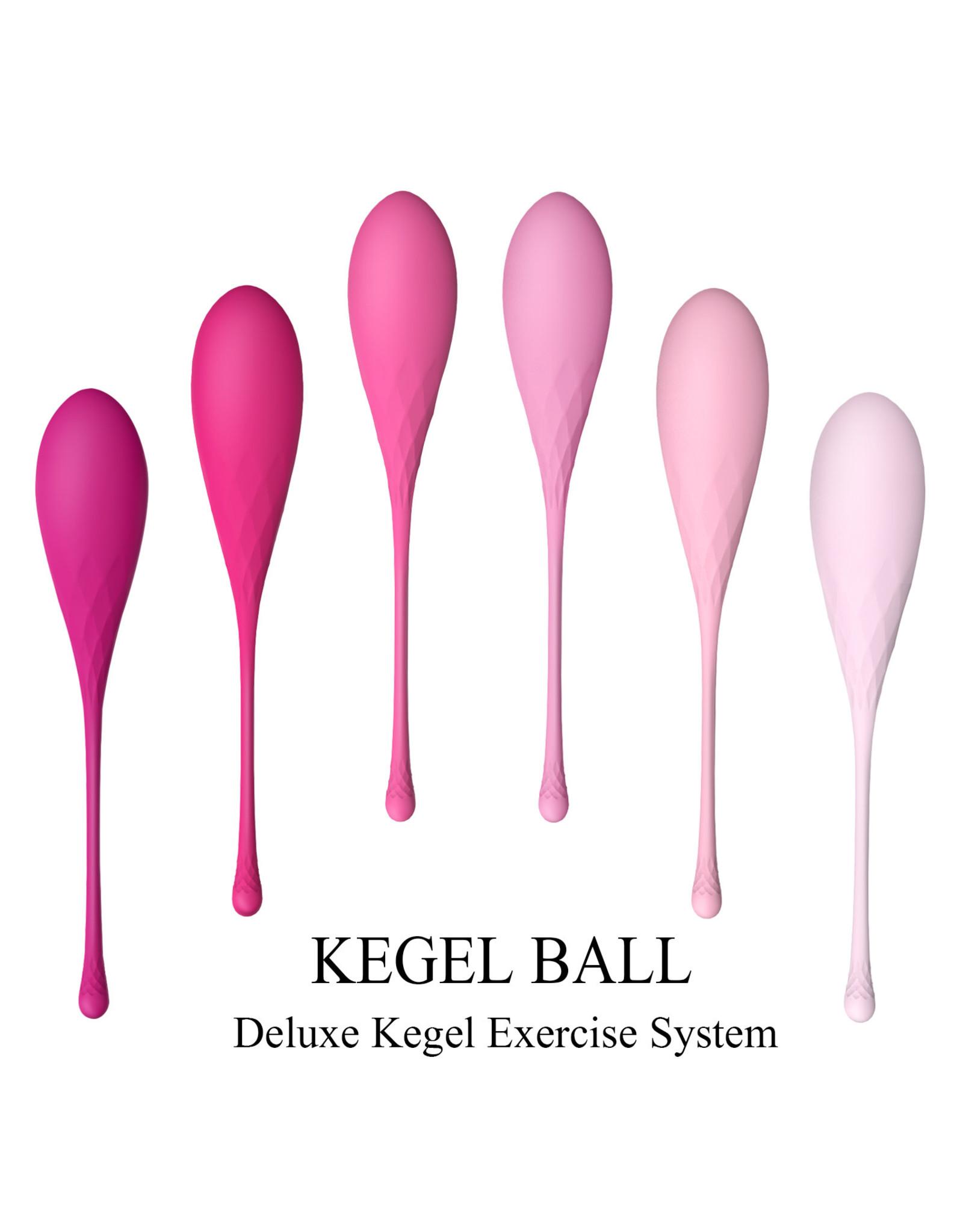 Babylon Babylon Deluxe Kegel 6 Phase Exercise System