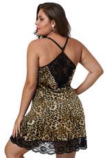 Babylon Leopard Lace Patch High Waist 2X