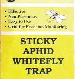 Seabright Sticky Aphid Whitefly Trap 5 pack