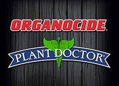 Organic Labs