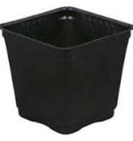 Gro Pro Gro Pro Square Plastic Pot Black 3.5 in