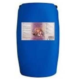 House & Garden House and Garden Nitrogen Boost 60 Liter