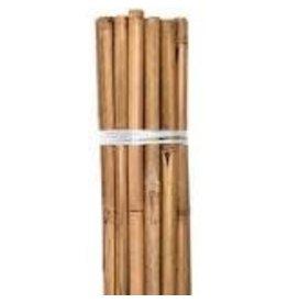 Growers Edge Grower's Edge Natural Bamboo 6 ft Bulk 50/Bag