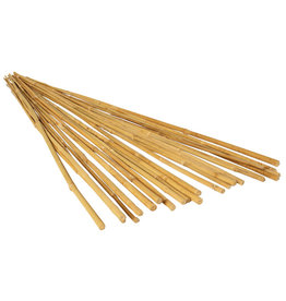 Grow!t GROW!T 6' Bamboo Stakes, Natural, pack of 25