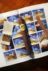 Cigar Art Cigar Art La Bella Otera Reserva Short 109