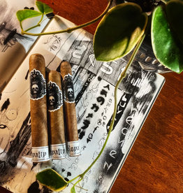 Black Label Trading Co BLTC Royalty Corona 5.5 x 42