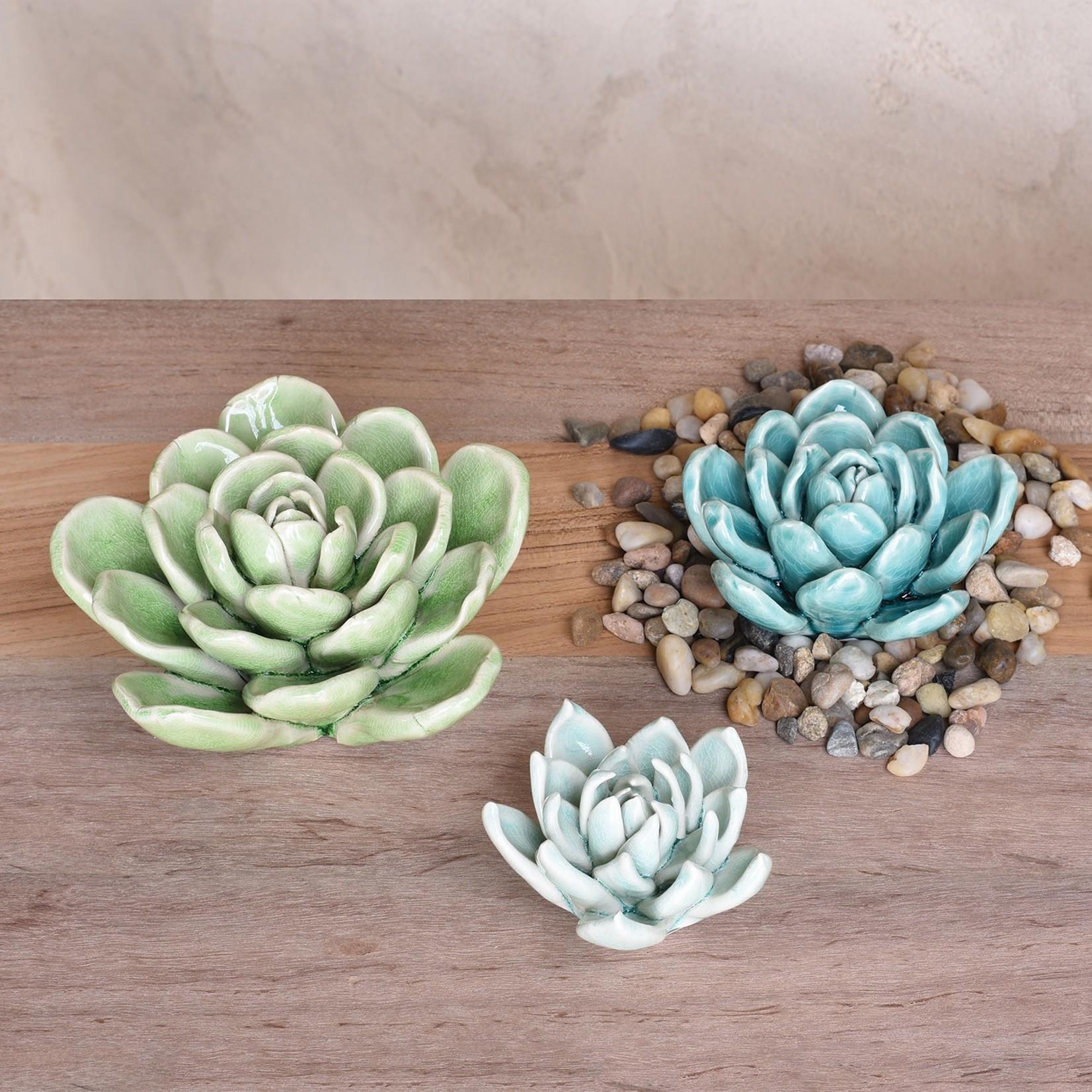 Homart Ceramic Succulents