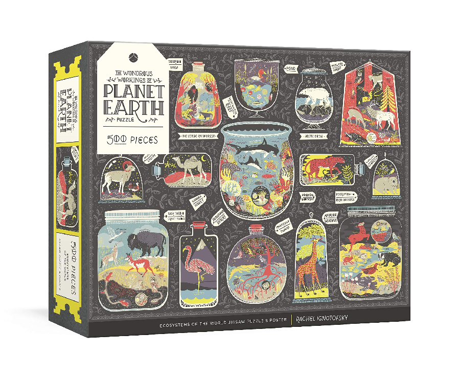 The Wondrous Workings of Planet Earth by Rachel Ignotofsky (500 pcs)