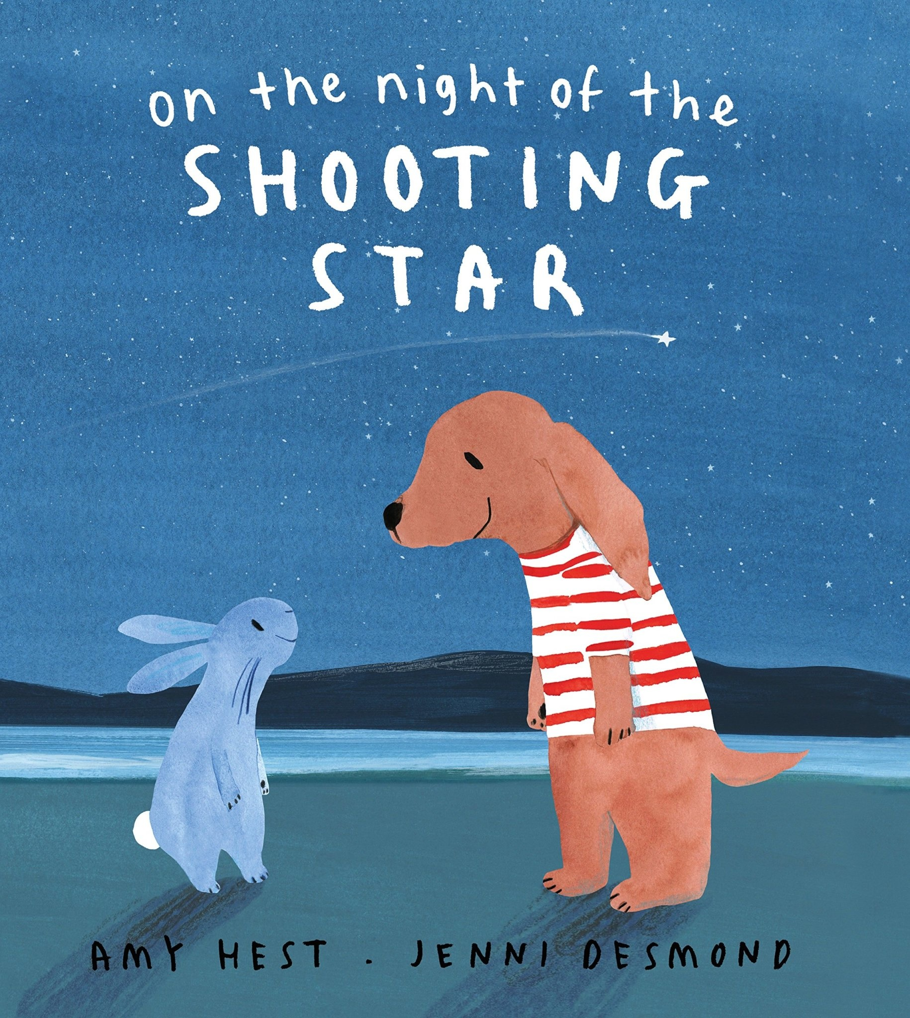 On the Night of the Shooting Star by Amy Hest (ages 2-5 years)