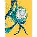 Lagom Design Cereus Flower
