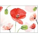 Bekking & Blitz Michelle Dujargin blank card
