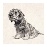 Museums and Galleries Puppy Love Card