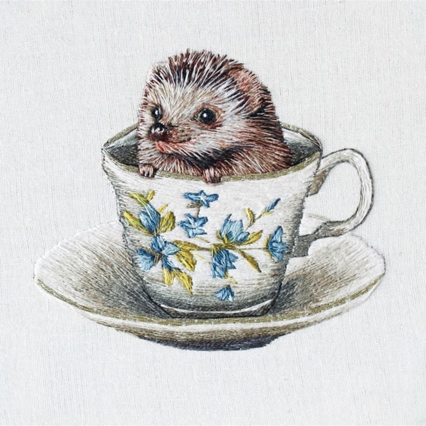 Museums and Galleries Baby Hedgehog Card