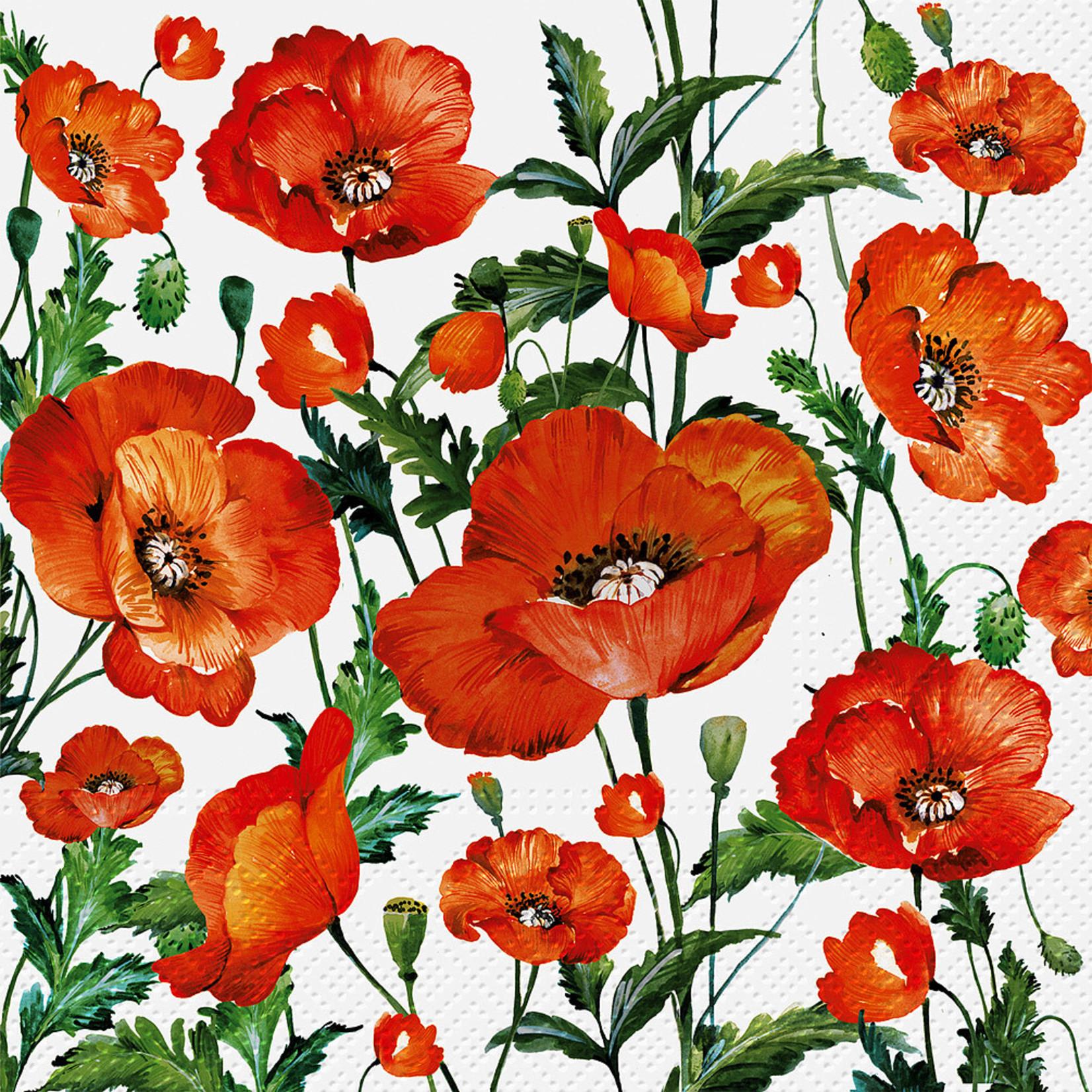 Abbott Flanders Poppy Paper Napkin