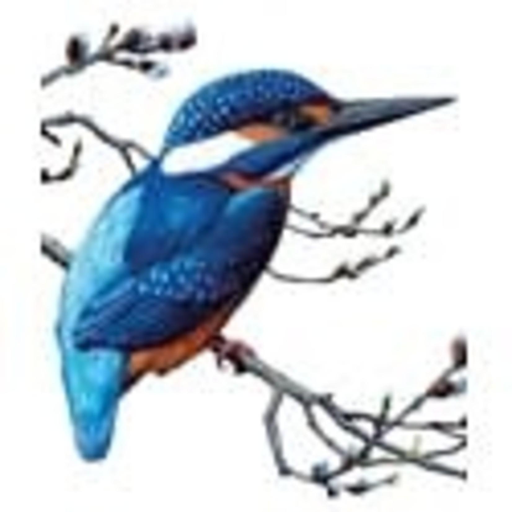 Archivist Kingfisher