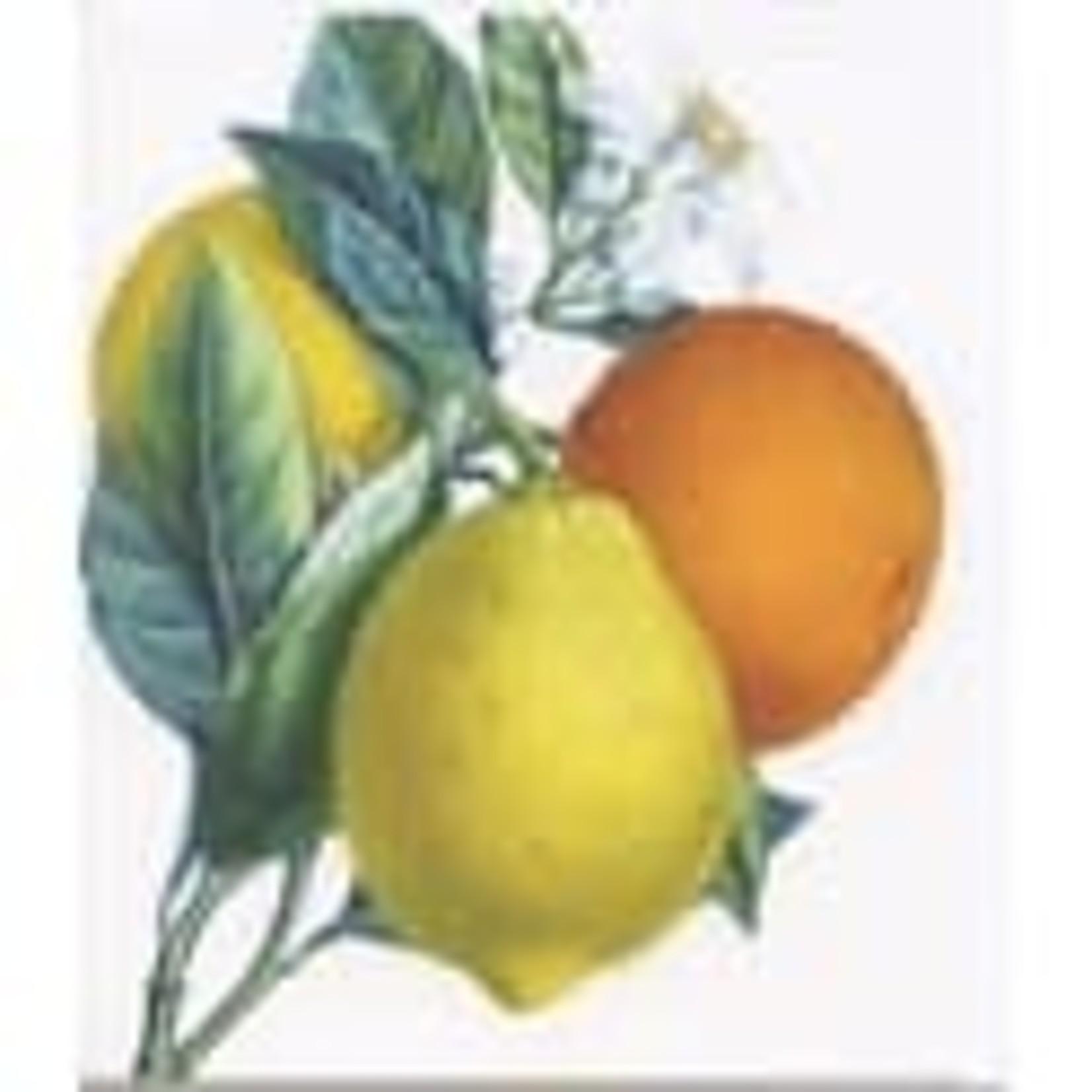 Archivist Oranges And Lemons