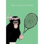 Calypso Cards Racket