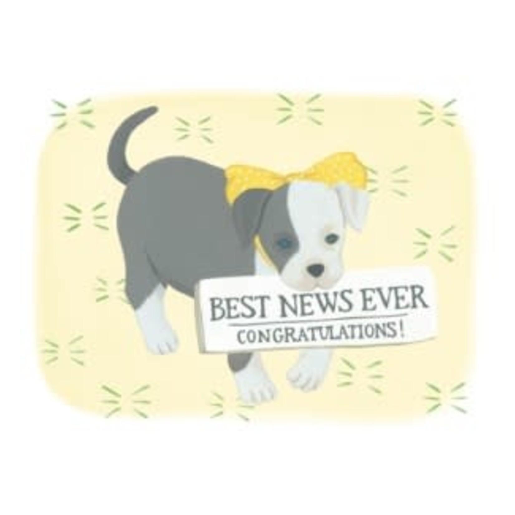 Half Penny Best News Puppy