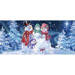 Sassafras Snowflake Family Switch Mat