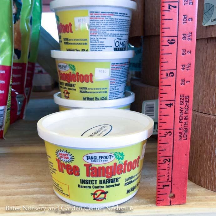 15oz Tub Tree Tanglefoot Insecticide