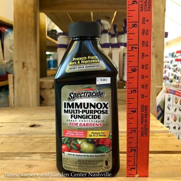 16oz Immunox Concentrate Multi-Purpose Fungicide