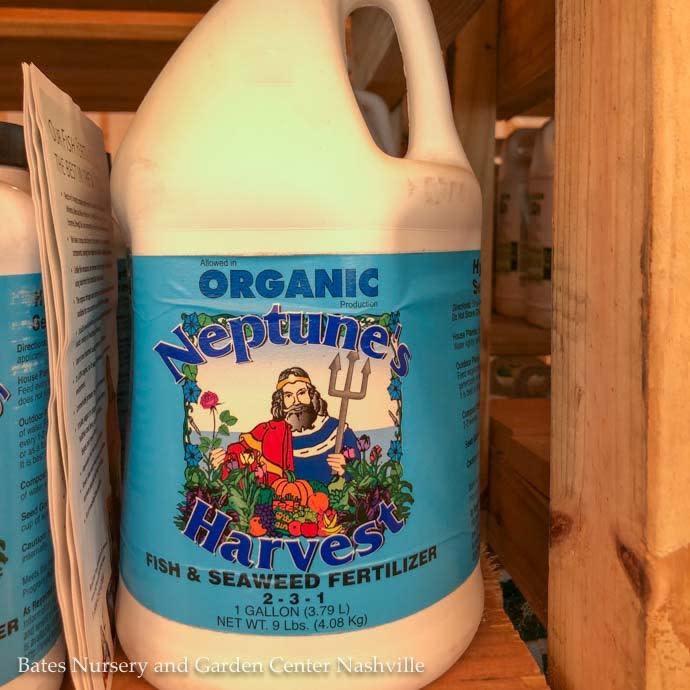 1Gal Organic Fish & Seaweed 2-3-1 Fertilizer Neptune's Harvest