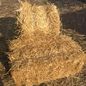 Wheat Straw Bale 8.99