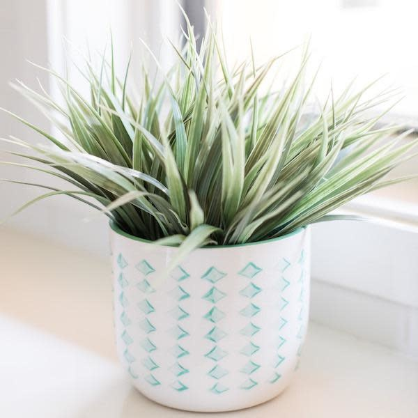 Pot Alexa White w/Green Decor & Green Interior 5x5