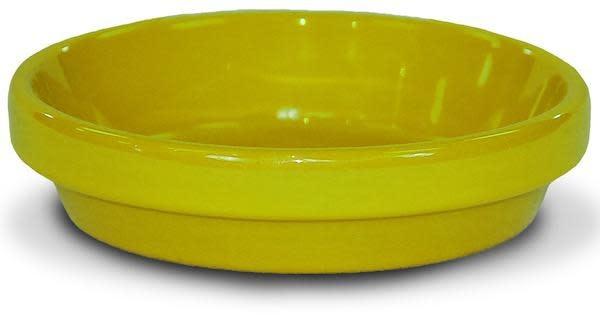 """Saucer 8"""" Glazed Yellow"""